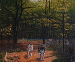 wolves_in_forest